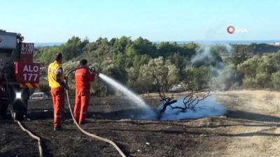 Manavgat'ta 8,5 hektar alanın zarar gördüğü orman çıkış yangının sebebi araştırılıyor