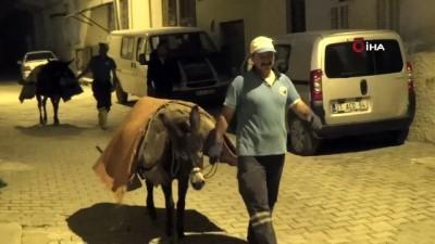 Antakya'nın tarihi ve dar sokaklarında çöpler 'eşeklerle' toplanıyor