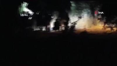 Zeytin tarlasında cinayet