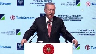 Erdoğan: 'Hedefimiz, 100 milyar dolarlık bir ticaret hacmine ulaşmaktır' - İSTANBUL