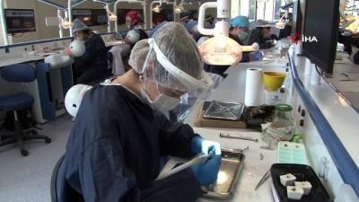 Geleceğin diş hekimleri bu laboratuvarlarda yetişiyor