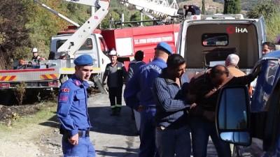 Ağacın tepesinde kozalak toplayan işçi elektrik akımına kapılarak öldü