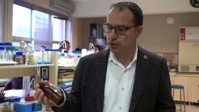 AIDS tedavisinde 'propolis' şifası - TRABZON