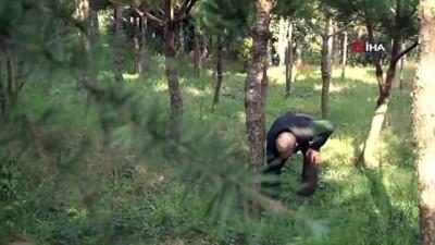 Çocukları gibi sevdiği ağaçların kesilmemesi şartıyla arazisini bağışlayacak