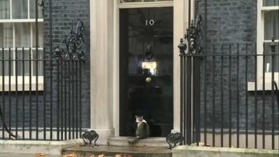 Downing Sokağı 10 numaranın ünlü kedisi Larry kapıda kaldı