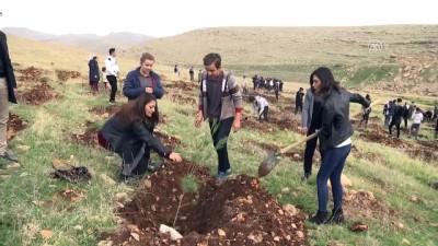 'Öğretmenler Günü' için 2 bin fidan toprakla buluştu - MARDİN
