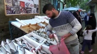 Kırmızı etteki fiyat artışı vatandaşı balığa yöneltti