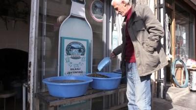 Derik zeytininde 'bereket' yılı - DİYARBAKIR