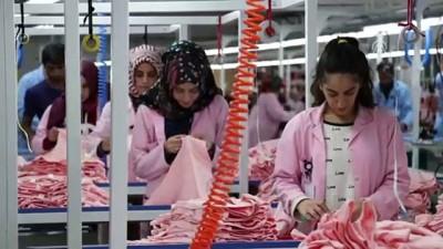 Memleketine kurduğu fabrikayla kadın istihdamına katkı sağlıyor - ELAZIĞ