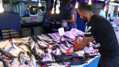 Karadeniz'de bir zamanlar 300'ü bulan balık çeşitliliği bugünlerde 15-20'lere kadar geriledi