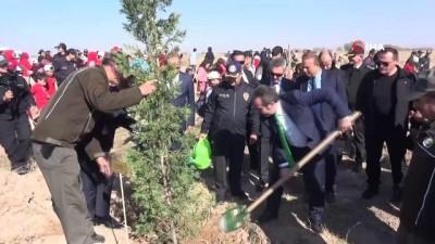 - Aksaray'da 5 bin 500 fidan toprakla buluşturuldu