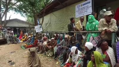 hayirseverler - Sadakataşı Derneği'nce Etiyopya'da 420 katarakt ameliyatı yapıldı - HARAR