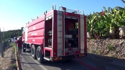 yangina mudahale -  Alanya'da otluk alanda yangın paniği