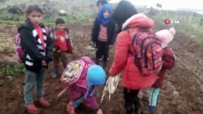Siverek'te şiddetli yağış sele neden oldu...Selde mahsur kalan çocukları taşıyan kepçe çamura saplandı
