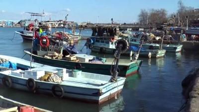 Balık rotasını Doğu Karadeniz'e çevirdi - DÜZCE