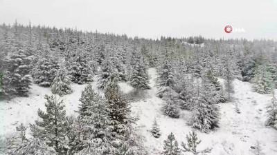 Eskişehir'i saran beyaz örtü havadan görüntülendi