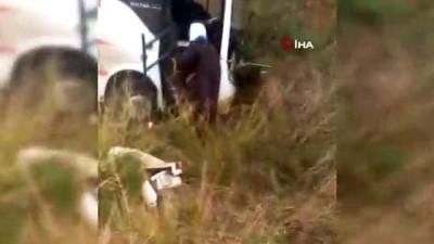Üniversite öğrencilerini taşıyan minibüs kaza yaptı: 6 yaralı Haberi