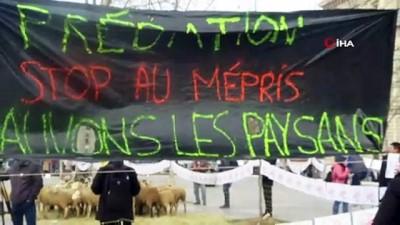 """- Paris'in ortasında koyunlu gösteri - Fransız köylü: """"12 bin koyunum telef oldu"""""""