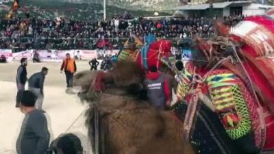 Demre'de deve güreşi heyecanı yaşandı