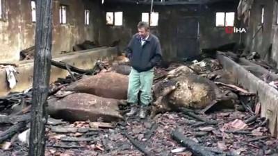 Ahır yangınında 12 büyükbaş hayvan telef oldu