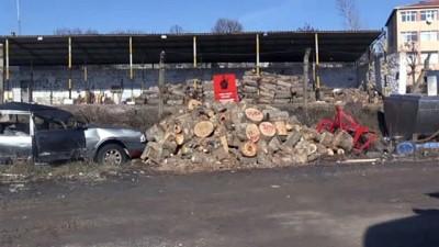 Kaçak ağaç kesimine soruşturma - KIRKLARELİ