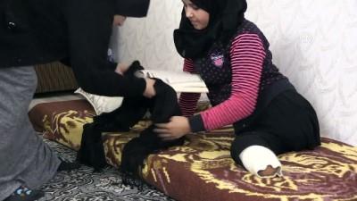 Esed'in bombaları Suriyeli Meryem'i yatağa mahkum etti - GAZİANTEP