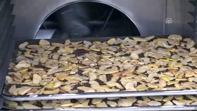 Meyve ve sebzeler 'termal su' ile kurutuluyor - AFYONKARAHİSAR