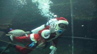 Bacadan beklenen Noel Baba akvaryumda görüldü