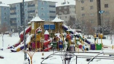 Doğu Anadolu Bölgesi yeniden kar yağışı etkisi altına girdi