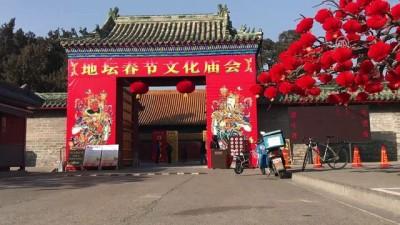 Çin Köpek Yılı'na giriyor - PEKİN