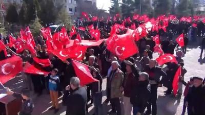 Zeytin Dalı Harekatı'na destek yürüyüşü - MARDİN