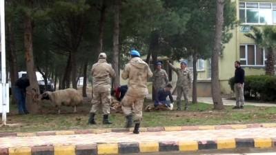 Komandolar Afrin'e dualarla uğurlandı