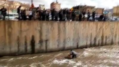 Dereye düşen sokak köpeğini kurtarmak için kıyafetleriyle suya girdi