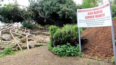 Yeni kazılar Giresun Adası'nın mitolojik tarihine ışık tutacak - GİRESUN