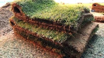 spor musabakasi - Bursaspor'da çim sorununun nedeni yanlış ilaçlama
