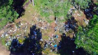Kartal'da ormanlık alanda çevre katliamı havadan görüntülendi
