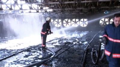 Çiftlik yangınında 22 bin civciv telef oldu