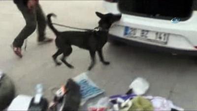 Otomobilin tavanına saklanan uyuşturucu detektör köpekle bulundu