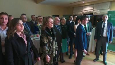 İrlanda 'Aziz Patrik' günü etkinliği - ANKARA