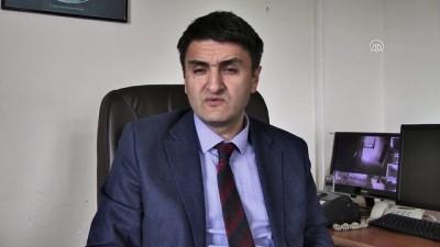 Kaybolmaya yüz tutan 'Zavot sığırı' devlet desteğiyle korunuyor - ARDAHAN