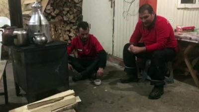 Kulübelerine gelen tilkiyi beslediler - ARTVİN