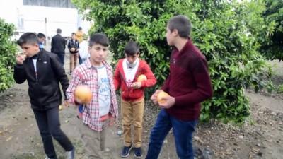 salda - 'Biz Anadoluyuz' projesi - MUĞLA