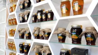 Yığılca arısı kozmetik ve ilaç sanayisine de hizmet edecek - DÜZCE
