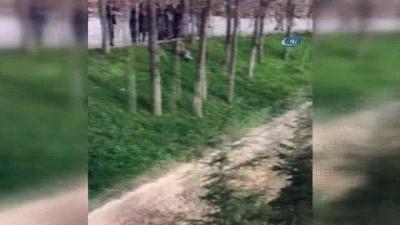 Yozgat'ta otlamaya çıkan inek çatıya düştü