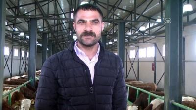 TKDK'den aldığı hibe desteğiyle çiftlik kurdu - MUŞ
