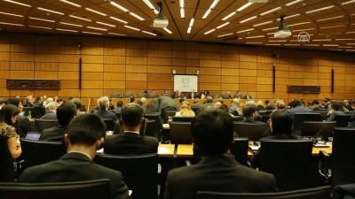 UAEA Yönetim Kurulu Toplantısı - VİYANA