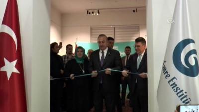 Çavuşoğlu: 'YEE'yi ülkeler ile ülkemiz arasında dostluk köprüsü olarak görüyoruz' - VİYANA