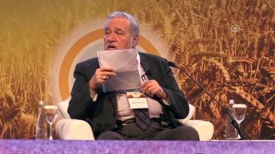 Tarihçi-yazar Prof. Dr. Ortaylı: 'Kara buğday türü terk edilmemeliydi' - ANTALYA