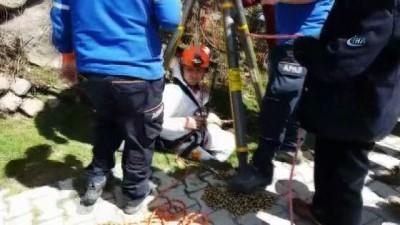 - Kuyuya düşen köpek AFAD ekiplerince kurtarıldı