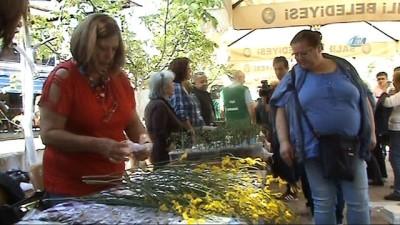 Binlerce tohum, Manisa'da takas edildi